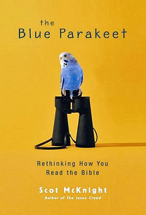 mcknight-blue-parakeet-4.jpg