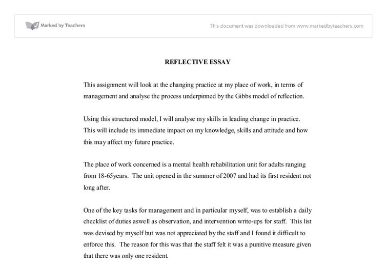 Leadership Essays Reflective Essay On Leadership In Mental Health