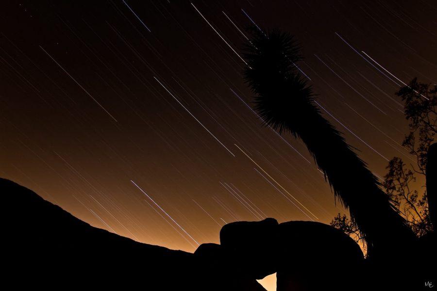 Mark Epstein Photo | Joshua Tree Star Trail