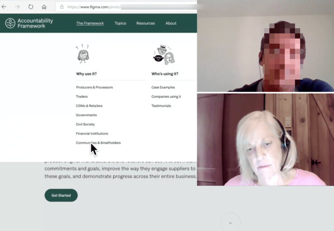 Remote usability testing of an NGO web platform
