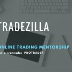 Tradezilla – Online Mentorship Program for Traders
