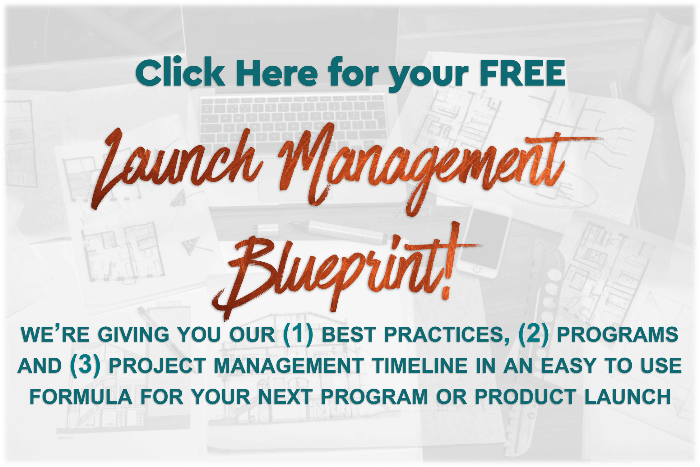 Get your Program Launch Blueprint and guide