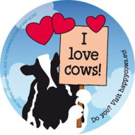 I-Love-Cows-Ben-and-Jerrys