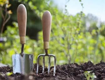 [Infographie] – Jardinage : Quels Circuits, Quelles Enseignes ?