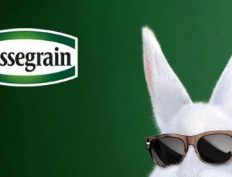 E-commerce : le lapin Cassegrain se lance dans la course