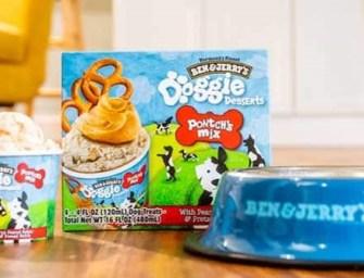 Ben and Jerry's à l'assaut du Petfood avec la 1ère glace pour chien