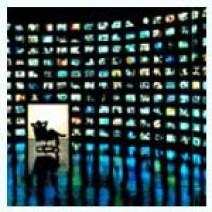 Televisión tradicional vs. resto de pantallas