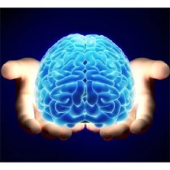 El neuromarketing revela lo inútil que es muchas veces colocar un spot en prime time