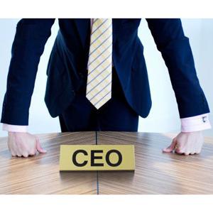 Por qué los directores de marketing tienen que aprender a entrenar a su CEO