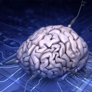 El SEO tiene mucho que aprender del neuromarketing si quiere sobrevivir