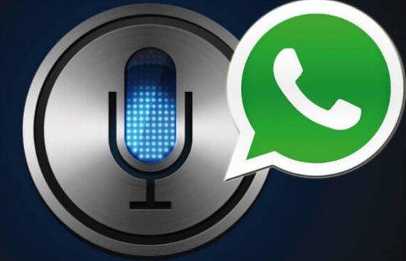 La última actualización de WhatsApp en iOS: Siri ya te lee los mensajes