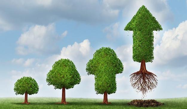 Conozca las maneras de potenciar el crecimiento empresarial en una empresa