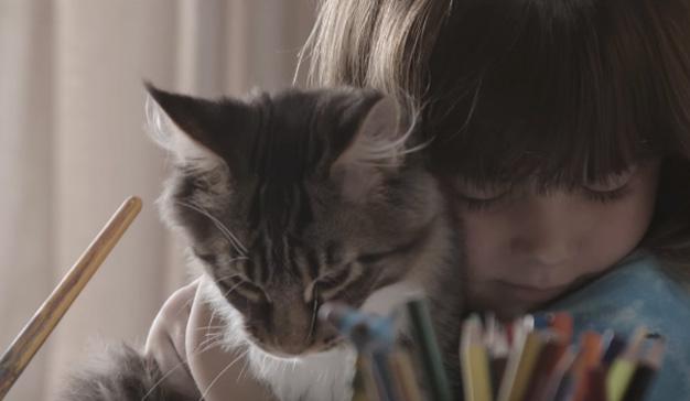 Este spot de Whiskas demuestra que los gatos, además de bellísimos, son excelentes terapeutas