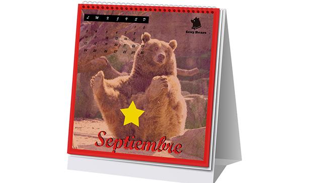 """VCCP Spain presenta """"Sexy Bears"""",  el primer calendario solidario con osos desnudos"""