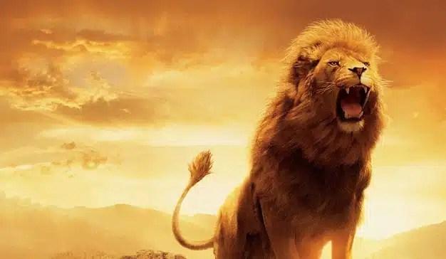 """Cannes Lions: rescatar la creatividad de las """"zarpas"""" de la tecnología"""