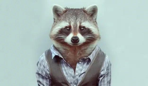 Por qué el legendario Chuck Porter cree que los marketeros deberían cazar mapaches