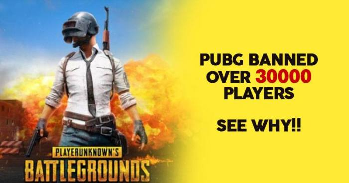 Image result for PUBG Banned