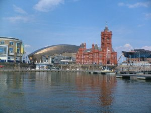 Website Designers In Cardiff