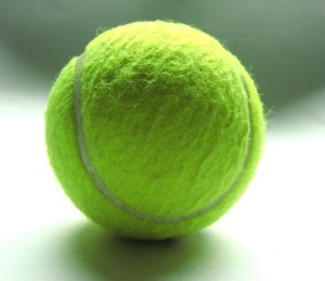 Website Designers In Wimbledon