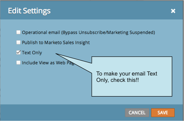 Email Text Only - Step 2