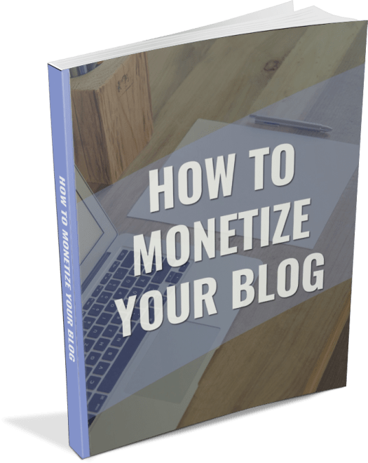 how to monetize your blog plr