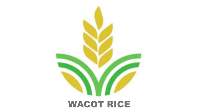 USAID Partners WACOT Rice On N5b Deal To Boost Rice Production In Kebbi State-marketingspace.com.ng