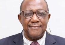 Dr. Bel-Molokwu To Speak At OAAN 36th AGM-marketingspace.com.ng