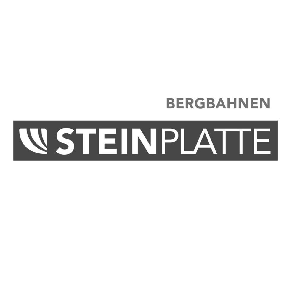 Steinplatte
