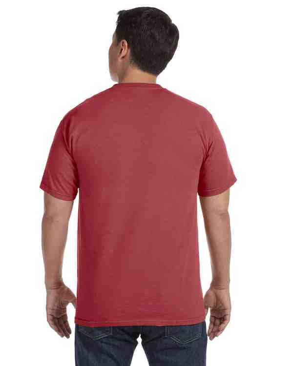 Comfort Colors Adult Heavyweight RS T-Shirt Brick Back