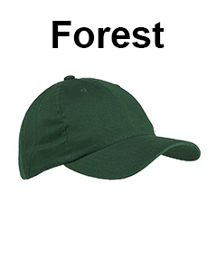 Big Accessories 6-Panel Brushed Twill Unstructured Cap Forest