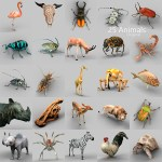 Animal 3D object Collection