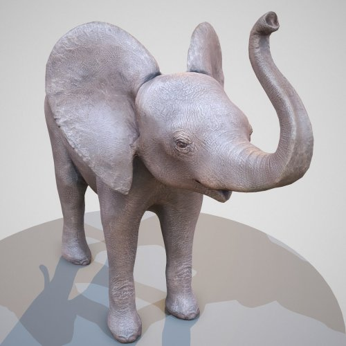 Baby Elephant 3D Scan