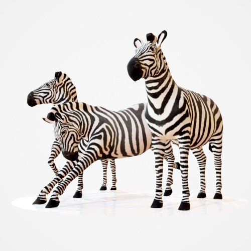 mark-florquin-3d-scanning-scan-photogrammetry-holographer-realistic-3d-model-zebra-safari-zoo