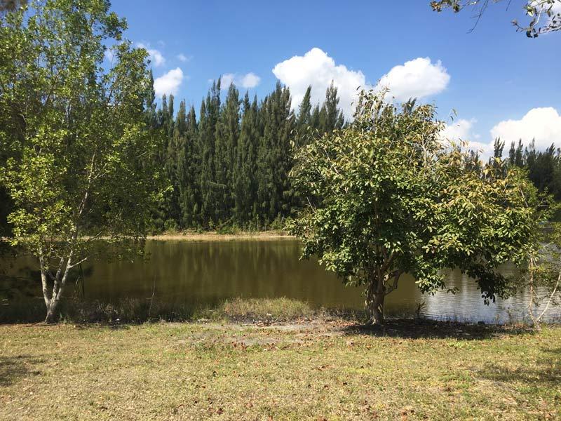 quiet picnic spot
