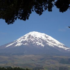 Chimborazo's role in proving Newton's theory of gravity