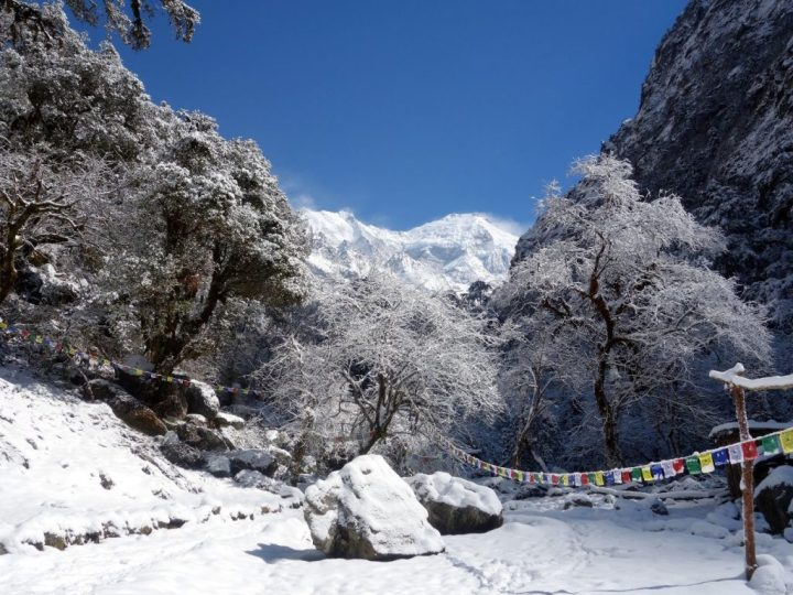 Christmas card view of the Langtang Valley, with Langtang Lirung rising above