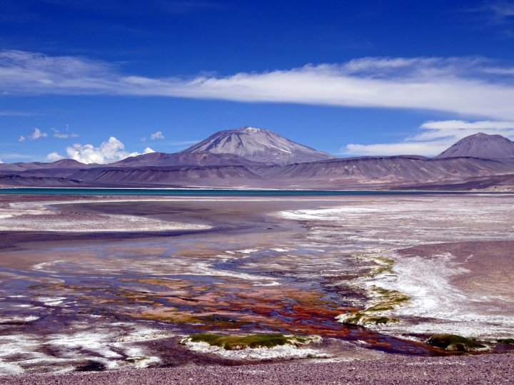 The Puna de Atacama is an amazing landscape - here's Incahuasi (6,621m) seen across a salt lake on a plateau at 4,300m