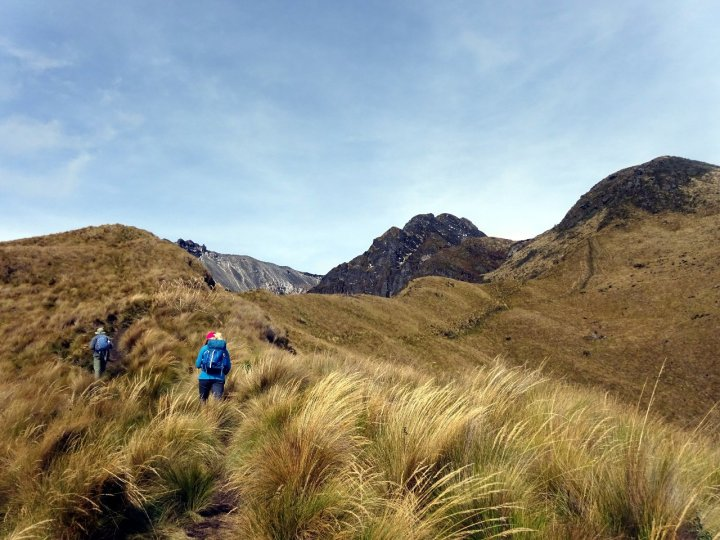 Ascending through the paramo. The ascent route follows the ridge to the right, up and over the first summit, then follows the crater rim on the far skyline back to the left up to the main summit.