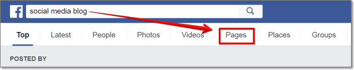"""go to Facebook, type a keyword related to your niche and press on """"Pages"""" tab."""