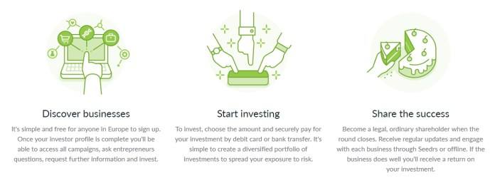 Seedrs Investment