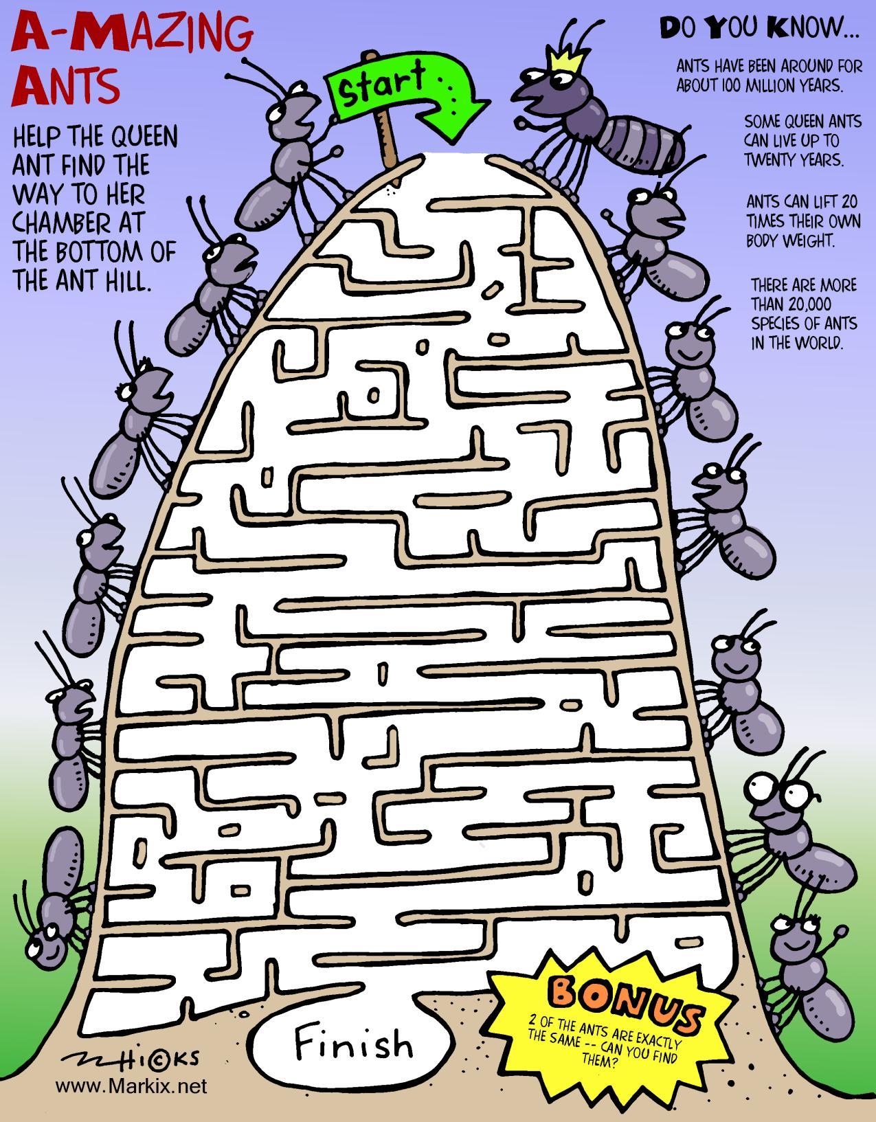 Ant Maze Worksheet
