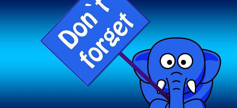 elephant proboscis shield memory courtesy of Pixabay