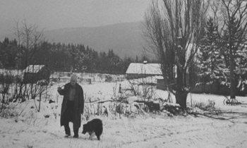 Robert Frost in snowy New England .jpg