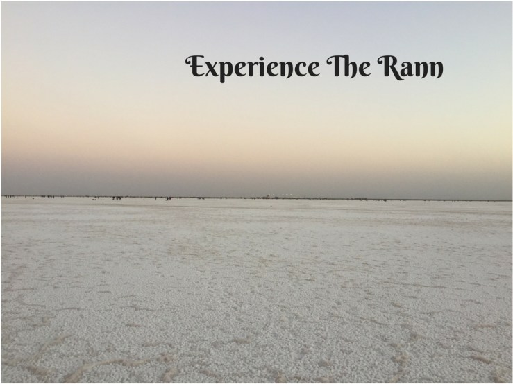 Rann Experience Mark My Adventure