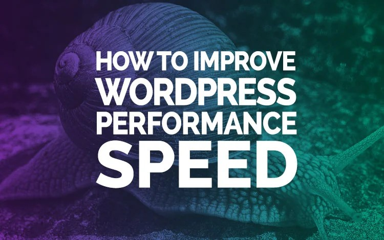wordpress performance speed