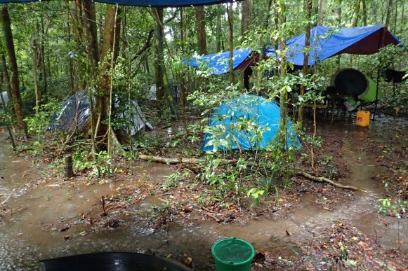 A selection of the rivers running through our camp. Photo by Ella Z. Lattenkamp
