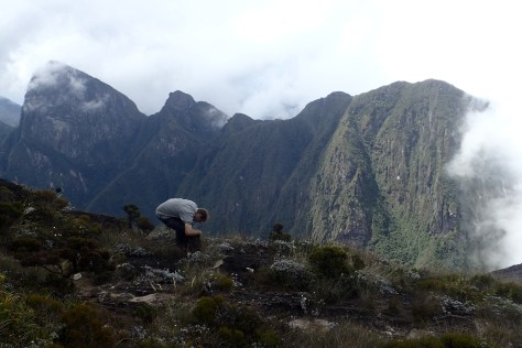 Miguel searches for frogs and skinks under rocks at the peak