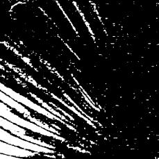 2014-06-06_12_11_15_Imagemagick-Ausgabe