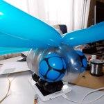 Robo-Libelle_Facettenaugen