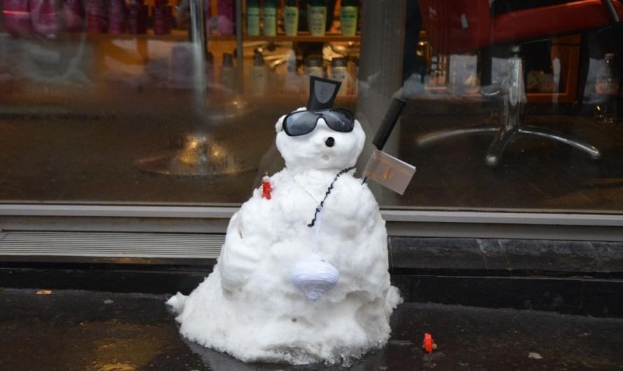 Paris im Schnee (Winter 2013)